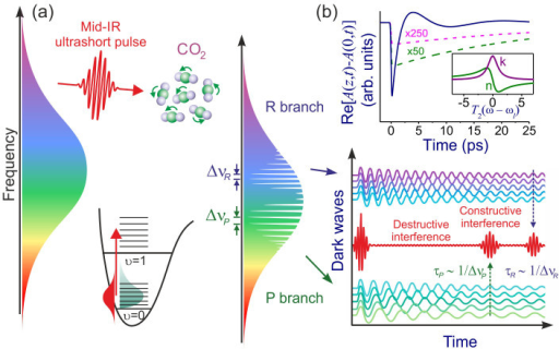 (a) Time-domain spectral interferometry in the mid-infrared. When its central wavelength is tuned on resonance with a typical molecular rovibrational band, the mid-IR driver, due to its extremely large bandwidth, interacts with the entire manifold of rovibrational transitions, exciting a broadband rovibrational wave packet. As a part of this process, the energy is transferred from the mid-IR driver to molecular motion, giving rise to narrowband absorption features in the spectrum of mid-IR radiation at the frequencies of individual molecular modes, separated by spectral intervals ΔνP and ΔνR for the P and R rovibrational branches, respectively. In the time domain, these narrowband spectral dips translate into stretched dark field waveforms, as shown in the right panel. Due to the coherence preserved across the entire spectrum of the broadband mid-IR driver, these stretched pulses interfere with each other, giving rise to high-visibility fringes in the waveform of the transmitted mid-IR field (the right panel), with prominent echo field recurrences, observed at delay times 1/(cΔνP) and 1/(cΔνR) for the P and R rovibrational branches, respectively. Because the shape of these fringes is fully controlled by the spectrum of molecular rovibrational modes, all the information on a molecule encoded in absorption spectra can be retrieved from mid-IR pulse shapes, thus allowing molecular fingerprints to be read out through a careful analysis of mid-IR waveforms. (b) Dynamics of a dark wave: the envelope of a dark wave, Re[A(z,t) − A(0,t)], induced by interaction with a molecular transition with a Lorentzian lineshape with T2 = 30 ps and Δωl = 0 for αlz = 0.1 (pink line), 1 (green line), and 100 (navy line). The input laser profile has a Gaussian envelope and a pulse width of 160 fs. The spectral profiles of the real and imaginary parts n and κ of the complex refractive index  are shown in the inset.