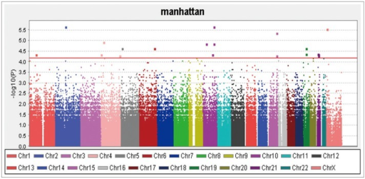 Manhattan plot for all the single nucleotide polymorphism.