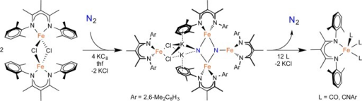 Key N2-Cleaving and N2-Forming Reactions inthe Multi-iron System