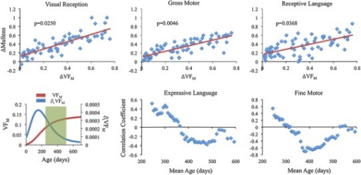 Top row: change in visual reception, gross motor, and receptive language Mullen scales of early learning assessment scores as a function of changing VFM for the thalamus. The change in cognitive assessment scores were found to significantly correlate with changing VFM, suggesting concomitant structure–function development. Bottom row: illustrative moving average correlations (Pearson's r, y-axis) as a function of mean age (days, x-axis) for the thalamus. Plots demonstrate the dynamic relationships between  and fine motor and expressive language ΔM. The age range at which these relationships transition appears to overlap with changes in the VFM and ∂t VFM trajectories