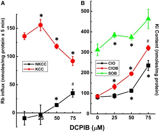 Cl-dependent Rb+ influx and Ki content in constitutively dephosphorylated KCC3 cells are DCPIB-sensitive. Lines indicate doxycycline-induced Rb+ influx (A) and Ki content (B), which were assessed in the following media: Cl− + 0.1 mM ouabain (ClO), Cl− + (ouabain + 10 μM bumetanide) (ClOB), S + (ouabain + bumetanide) (SOB) after induction of KCC3 T991A/T1048A (AA) (see Materials and Methods for details). (A) Calculated Rb+ flux through NKCC, black squares and KCC, red circles as the Cl-dependent, ouabain-insensitive, bumetanide-sensitive Rb+ influx, and Cl-dependent, ouabain and bumetanide-insensitive Rb+ influx, respectively. Calculation of NKCC in AA cells after induction may result in a negative or positive value depending on the relative magnitude of the Rb+ influx in ClOB with respect to ClO, i.e., CLO − CLOB = + or − NKCC (A); for Ki content (B) ClO, black squares, CLOB, red circles and SOB, green triangles (see Results and Discussion for further details). Flux time, 5 min; n = 4 individual determinations. *p < 0.05 and #p < 0.005 as determined by paired t-test with respect to 0 μM DCPIB; data represent the mean ± SEM values. Representative results from 4 similar experiments.