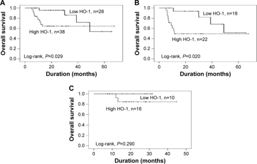 Kaplan–Meier OS curves of CC-RCC patients with different levels of HO-1 expression.Notes: (A) All patients; (B) sorafenib group; (C) sunitinib group.Abbreviations: OS, overall survival; CC-RCC, clear cell renal cell carcinoma; HO-1, heme oxygenase-1; n, number of patients.