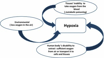 Main causes of hypoxia