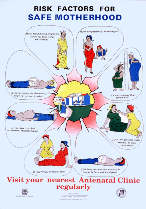 <p>Predominantly white poster with multicolor lettering.  Title at top of poster.  Visual images are color illustrations of pregnant women experiencing a variety of risk factors including bleeding, being physically handicapped, being short, being anemic, having a breech presentation, edema, previous Caesarian section, or multiple births.  An illustration of a clinic is in the center of the poster.  Caption below illustration.  Publisher information at bottom of poster.</p>