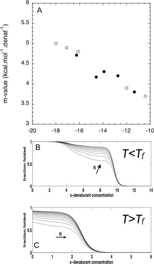 Application of the coarse-grained model to predict the chemical denaturant induced unfolding.(A) The computed free energy in water and m-value for the coarse grain model with the elementary parameters from Figure 6, and T = 0.9147 Tf, α = 1.7 (closed circles), and the experimentally determined values (open circles). (B) Folding curves predicted for TPR proteins of different lengths (from 5 to 30), at T = 0.9 Tf. (C) Folding curves predicted for TPR proteins of different lengths (from 5 to 30), at T = 1.1 Tf.