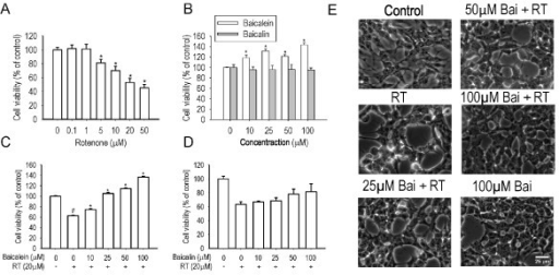 Effects of baicalein and baicalin on rotenone-induced cell death in SH-SY5Y cells. Cells were incubated with increasing concentrations of rotenone (A), baicalein and baicalin (B) respectively for 24 hours in serum-free medium (n = 6, *P < 0.01 versus control). Cells were pretreated with baicalein (C) or baicalin (D) for 1 hour and then cotreated with 20 μM rotenone for 24 hours in serum-free medium (n = 6, #P < 0.01 versus control, *P < 0.01 versus rotenone treatment). E: The morphological change was visualized by phase-contrast imaging. Scale bar: 50 μm.