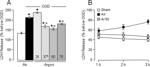 "Reduction by argon (Ar) of OGD-induced LDH release.(A) Concentration-response effects of argon (Ar) on OGD-induced LDH release (n = 23–27 per group). Exposure to OGD led to an increase in LDH release. Argon of 37.5 vol% to 75 vol% significantly reduced the increase in LDH release induced by OGD. (B) Time-course effects of OGD-induced cell injury and argon-induced neuroprotection. Cell injury induced by OGD as well as neuroprotection by argon increased as a function of time during the 3-h ""reperfusion"" period. Data are expressed as mean ± SEM. *P<0.05 vs OGD control slices; +P<0.05 vs sham slices."