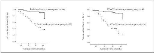 Kaplan–Meier survival curves of UCC patients with various expression levels of Bmi-1 and CD44V6 proteins.