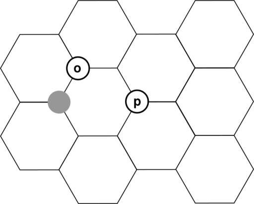 Schematic representation of the honeycomb lattice of a graphenelayer with a hydrogen atom attached (gray circle). Stable dimer configurationscan be formed by attachment of a second hydrogen atom at the o(rtho)or p(ara) position.