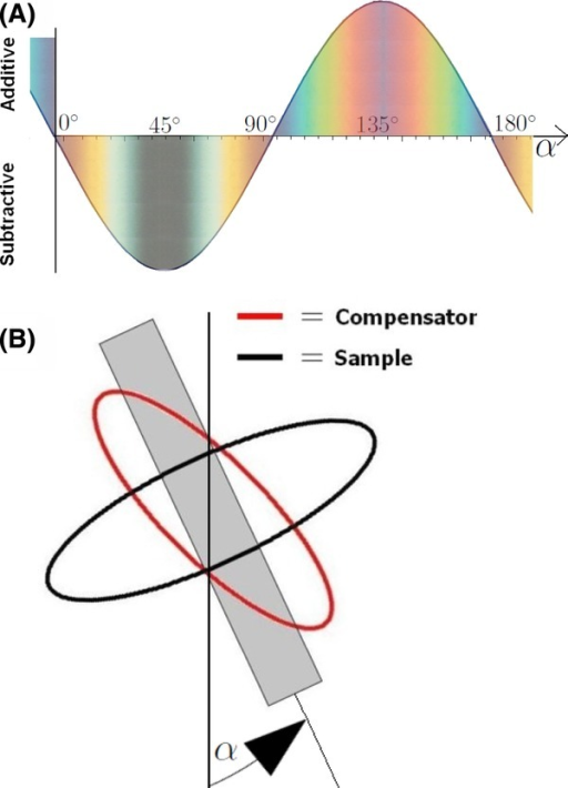 (A) The total retardation as a function of the sample orientation angle α for a sample with positive elongation. The expected observable colours are also shown, from the Michel–Levy birefringence chart (Fig. 5). Note the blue and yellow hues for α close to . (B) Wavefront ellipses of the compensator and sample, vertical line represents the analyser axis.