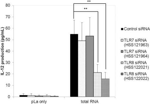 Effect of siRNA treatment on IL-12 production against total RNA of E.faecalis EC-12.siRNA treatment was performed as described in Material and Methods. Fragmented total RNA (7 μg/mL) from E. faecalis EC-12 was transfected using pLa to PMA-differentiated THP-1 cells after siRNA treatment. After 24 h of incubation, the concentration of IL-12 protein in the culture supernatant was measured using enzyme-linked immunosorbent assay. **: P < 0.01, mean ± SD, n = 6.