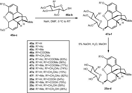 Synthesis of M6G thiosaccharide analogues (25a–d) [4]