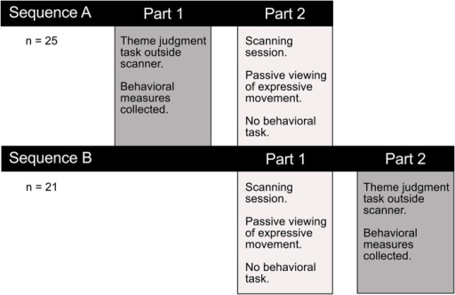 Experimental testing procedure. Participants completed a thematic interpretation task outside the scanner, either before or after the imaging session. Performance on this task allowed us to test whether there was a difference in how readily observers interpreted the intended meaning conveyed through dance or pantomime. Any performance differences on this explicit theme judgment task could help interpret the functional significance of observed differences in brain activity associated with passively viewing the two types of movement in the scanner.