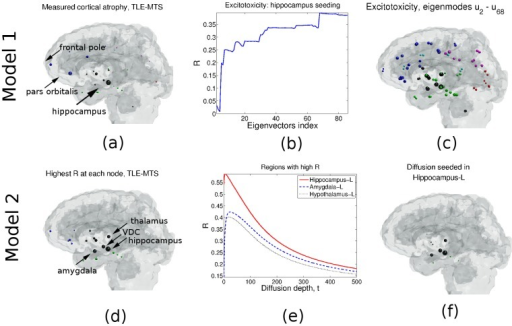 (a) TLE-MTS atrophy distribution. As expected, the hippocampus has the highest atrophy, consistent with TLE-MTS. (b) Pearson correlation R between Φ1 and measured atrophy vs. the number of eigen-modes used. Peak R is reached when eigen-modes u2–68 are used. (c) Atrophy distribution estimated using Model 1 using eigen-modes u2 − u68. Model 2: (d) Correlation R obtained when each node is seeded (model Φ2). The highest R is obtained when the hippocampus is seeded. (e) R vs. graph diffusion depth. Hippocampus seeding leads to the highest R is obtained at t = 5.56, followed by amygdala and the hypothalamus. (f) Estimated TLE-MTS atrophy obtained from Model 2 when the hippocampus is seeded.