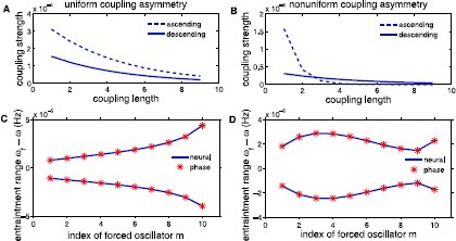 Entrainment ranges as a function of the forcing position for varying intersegmental connections. Uniform coupling asymmetry is illustrated in A with , , and . All of the ascending coupling strengths are stronger than descending for all connection lengths. This coupling scheme is used to produce monotonic entrainment ranges as a function of the forcing position, seen in C. Nonuniform coupling asymmetry is depicted in B with , , , and . For our choice of parameters, ascending connections become stronger at connections of length 3. Nonuniform coupling is used to compute the entrainment range in D, where see non-monotonic entrainment ranges