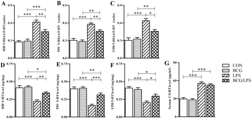 Neonatal BCG vaccination alleviates LPS-induced 5-HT metabolism disorder in the brain without altering the peripheral corticostrone levels. These molecues were examined 4 h subsequent to LPS injection. The bars represent the mean ratio of 5-HIAA to 5-HT in the (A) hippocampus, (B) prefrontal cortex and (C) striatum. The bars represent the mean levels of 5-HT in the (D) hippocampus, (E) prefrontal cortex and (F) striatum. (G) The bars represent the mean levels of corticosterone in the serum. The data are expressed as the mean ± SE (n=6) and were analyzed using two-way analysis of variance followed by Bonferroni post-hoc test. *, ** and *** indicate P<0.05, P<0.01 and P<0.001, respectively (post-hoc differences). The experiment was repeated three times with similar results. BCG, Bacillus Calmette-Guérin; LPS, lipopolysaccharide; CON, control; 5-HT, 5-hydroxytryptamine; 5-HIAA, 5-hydroxyindoleacetic acid; CORT, corticosterone; SE, standard error; HIP, hippocampus; PFC, prefrontal cortex; STM, striatum.