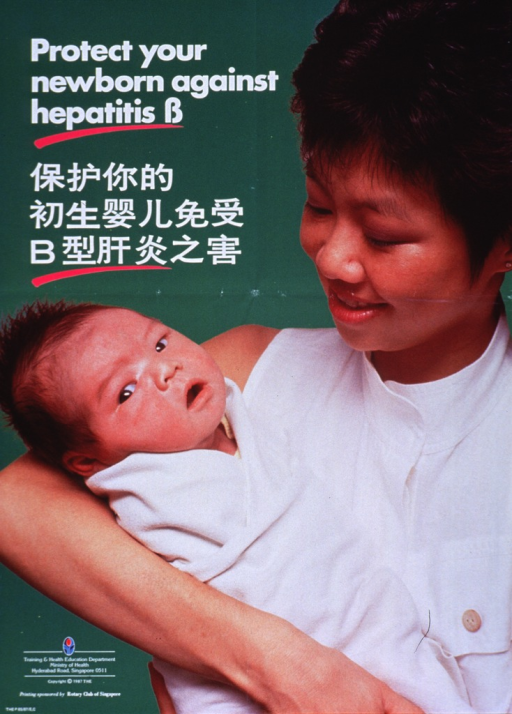<p>Predominantly bright green poster with white lettering.  Title in upper left corner in both English and Chinese.  Visual image is a reproduction of a color photo of a woman holding her baby.  Publisher and sponsor information in lower left corner.</p>