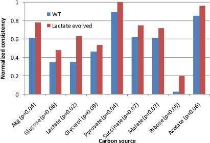 Lactate-evolved strain consistency scores.This figure demonstrates the same result as Figure 3, but with strains evolved on lactate. The normalized consistency scores for growth on each of the tested carbon sources are higher for evolved strains, indicating that the gene expression data from the evolved strains are more consistent with efficient growth on each carbon source.