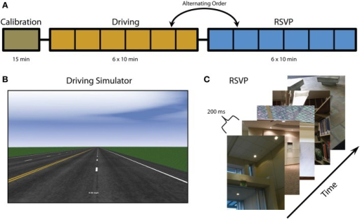 Experimental overview. (A) Experiment timeline including calibration, driving, and RSVP tasks (note that the order of the driving and RSVP tasks alternate between participants). Vertical black lines indicate block intervals where fatigue surveys were administered. (B) Screenshot of driving simulator. (C) RSVP paradigm and example images. Figure adapted from Touryan et al. (2013a).
