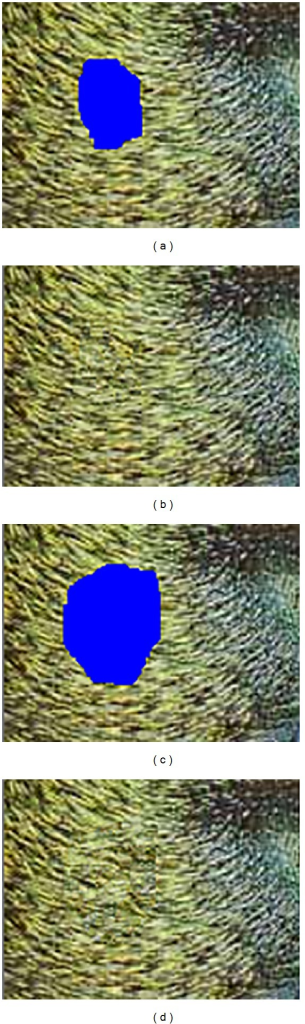 Test images with damage of (a) 983 pixels, (c) 2120 pixels and the corresponding results (b) and (d) obtained with Criminisi's algorithm.