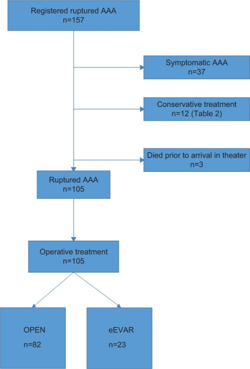 Patient flow through identification and selection process.Abbreviations: AAA, abdominal aortic aneurysm; eEVAR, emergency endovascular aneurysm repair; OPEN, conservative open repair.