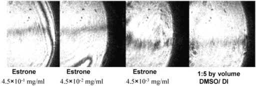Reflected Images from the DBSPRI sensor with different concentrations of estrone 1:5 by volume dimethyl sulfoxide (DMSO)/deionized (DI) water used as a reference.