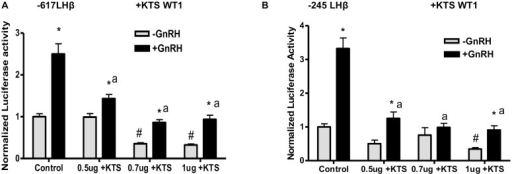 WT1 (+KTS) decreases basal and GnRH-stimulated LHβ promoter activity.LβT2 cells were transfected with either A) A luciferase reporter construct driven by the rat LHβ promoter (-617 to +41 bp) including both distal and proximal GnRH responsive promoter regions, or B) A luciferase reporter construct driven by the rat LHβ promoter (-245 to +44 bp), including only the proximal GnRH response region of the promoter. Constructs were cotransfected with or without 0.5, 0.7,1 μg of WT1 (+KTS) plasmid or control plasmid to normalize DNA. At 48 h post-transfection, cells were treated with 50nM GnRH for 6 h and collected in lysis buffer. Luciferase activity was measured, and data expressed as average ± SE for 6 samples; the experiment was performed 3 times each. Statistical significance was determined using ANOVA (confidence interval determined by the Bonferroni multiple comparison test). * p<.05 -GnRH vs +GnRH, # = p<.05 control, -GnRH vs –GnRH+WT1, a = p<.05 control, +GnRH vs +GnRH +WT1.