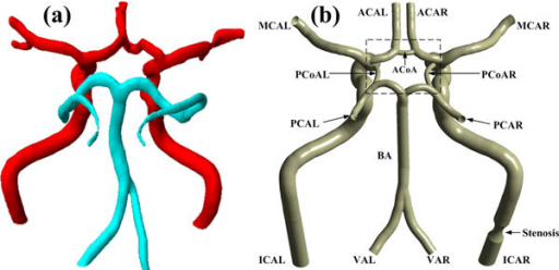 "3D models of the CoW. (a) Patient-specific model. (b) Ideal model. The abbreviation of each artery branch is marked nearby. The last letter ""L"" and ""R"" in the abbreviations represent the left and right side of the arteries, respectively. The black dashed box shows the center of the CoW."