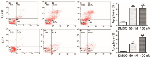 Annexin V analysis of apoptosis induced by RO3280 in acute leukemia cells. Annexin V staining of cells following a 24 h treatment with RO3280 at 50 or 100 nM compared with DMSO control mock treatment. All these analyses were repeated three times. **p < 0.01.