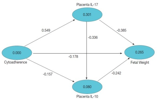 Model hypothesis on the relationship between infection with Plasmodium berghei, cytoadherence, levels of IL-17 and IL-10 in the placenta, and fetal weight, illustrated by value path coefficients and R2.