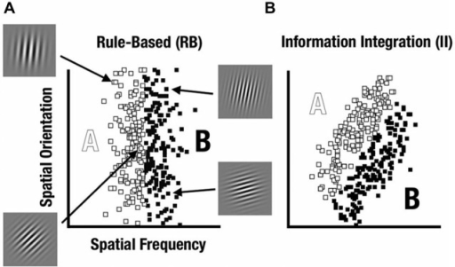 Rule-based (RB) and information-integration (II) category distributions used in the study. Sine-wave gratings varied based on spatial frequency and spatial orientation. (A) The RB category was defined based on frequency whereas orientation varied unsystematically. (B) The II category was defined based on both frequency and orientation with a diagonal decision bound.