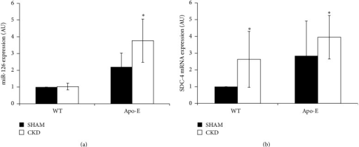 miR-126, miR-126, and SDC-4 expression in control and atherosclerotic mice. Twenty-week-old mice aortas were isolated from wild-type (WT) and Apo-E KO mice for miRNA and mRNA studies at the indicated times. CKD mice were subjected to 10 weeks of uremia. (a) miR-126 expression expressed as RQ normalized to U6. (b) SDC-4 expression normalized to GAPDH. Values are expressed as mean ± SD of 3 independent experiments (AU: arbitrary units). Student's t-test, for miR-126: ∗P < 0.05 (WT sham versus Apo-E CKD); for SDC-4: ∗P < 0.05 (WT sham versus WT CKD), ∗P < 0.05 (WT sham versus Apo-E CKD).
