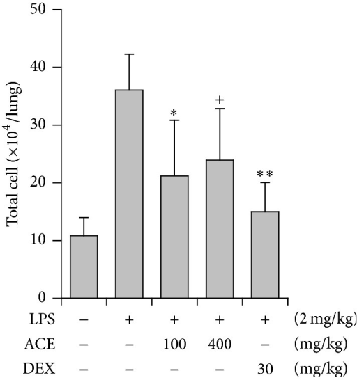 Inhibition of Asparagus radix (ACE) on LPS-induced airway inflammation in mice. LPS was administered to mice intranasally. Total cell numbers in the BALF were counted using haemocytometer. The BALF was obtained at 16 h after LPS treatment. DEX: dexamethasone; +P < 0.1, ∗P < 0.05, and ∗∗P < 0.01, significantly different from the LPS-treated group (n = 5).