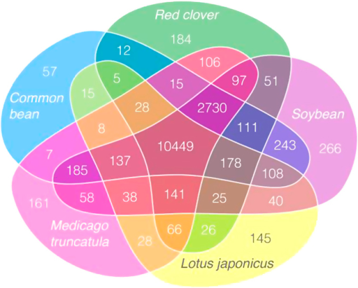 Venn diagram of gene clusters shared by the four Fabaceae species, red clover, M. truncatula, L. japonicas, soybean and common bean.The diagram was drafted with R/ggplot258 using facet_grid(), with manual redrawing using the inkscape software (https://inkscape.org/).