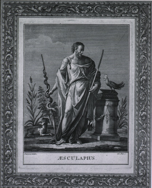 <p>Full length figure, wearing Grecian robe, and holding staff with sacred serpent.  Standing beside a pillar with a cock on top.  A small dog lies at his feet.  The picture is within a decorated border.</p>