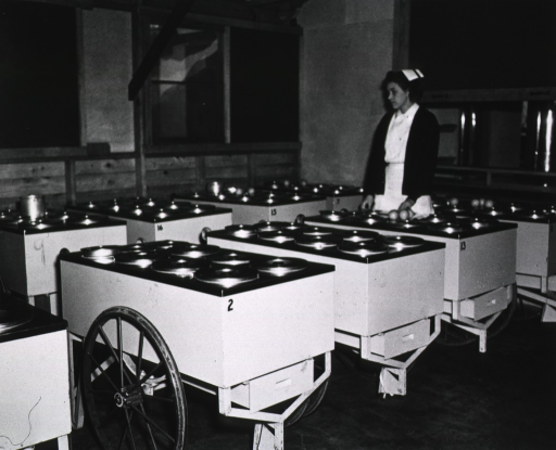 <p>A woman in a nurse's uniform stands amidst food service carts.</p>