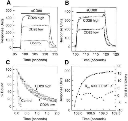 Estimating the kon and koff for sCD80 binding CD28 Ig. (A)  Example of primary data. sCD80 (2.65 μM) was injected (solid bar) at 80  μl/min through FCs with nothing immobilized (Control) or CD28 Ig immobilized at low (3400 RUs) or high (6200 RUs) levels. (B) Effect of  varying the flow rate. sCD80 (2.65 μM) was injected (solid bar) at 40 (solid  line) or 80 (stippled line) μl/min through FCs with high or low levels of  CD28 Ig. Background responses (following injection through a control  FC) have been subtracted. (C) Dissociation of sCD80 from FC with high  (•, ○) or low (▴, ▵) levels of CD28 Ig at flow rate of 40 (•, ▴, ▪) or  80 (○, ▵, □) μl/min. Also shown is the fall in response in the same period following injection of sCD80 through a control FC (▪, □). The data  fitted well to single exponential decay curves (dotted lines), yielding the  following t1/2 values: •, 0.93 s; ○, 0.84 s; ▴, 0.69 s; Δ, 0.64 s; ▪, 0.075 s;  □, 0.04 s. (D) Obtaining the kon by nonlinear curve fitting. Eq. 1 (see  Materials and Methods) was fitted (solid line) to data (•) from (B) (corresponding to binding of sCD80 to CD28 Ig [low level] at 80 μl/min),  yielding the indicated residuals (▪) and kon.