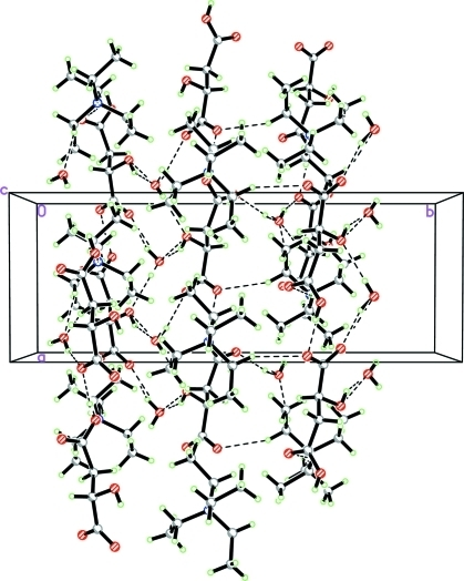The crystal packing of (I), viewed down the c-axis showing infinite 1-D chains along the a and b-axes of the unit cell. Intermolecular interactions are shown as dashed lines.