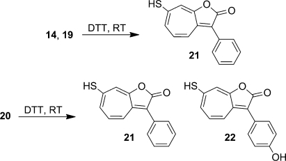 Products of the Reactions of 14, 19, and 20 with the Disulfide Reducing Agent Dithiothreitol (DTT)