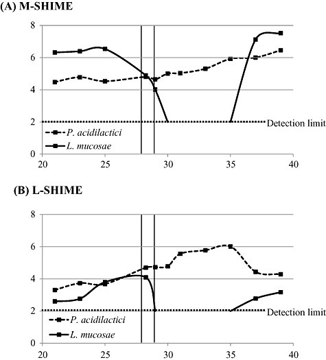 Abundance of Pediococcus acidilactici and Lactobacillus mucosae (log cfu ml−1) as determined with plate counts on a Lactobacillus‐specific growth medium (LAMVAB) in the luminal content of the M‐SHIME (A) and L‐SHIME (B). Results are represented in function of the time after inoculation (days). An antibiotic pulse with 10 µg l−1 tetracycline, amoxicillin and ciprofloxacin was applied on two consecutive days (day 28 and 29 after inoculation). The detection limit of the plate count‐method was 2 log cfu ml−1.