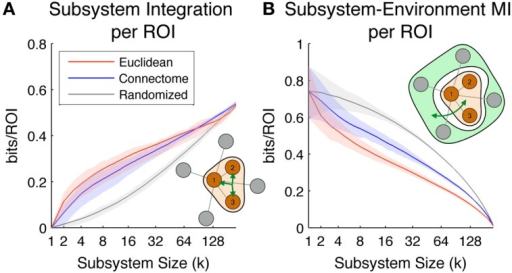 Scaling of the subsystem predictability measures. Colored lines indicate mean values across all subsystems, while shaded areas indicate values within 1st and 3rd quartile. Red, blue, and gray colors correspond to subsystems chosen according to Euclidean, Connectome and Randomized metrics respectively. (A) Subsystem integration per ROI, showing total correlation in the joint activity of ROIs in subsystems of different sizes. The illustration in the lower right corner diagrams how this measure is computed for a given subsystem of size 3. (B) Subsystem-Environment MI, showing functional coupling between subsystems and environments for different sizes. The illustration in the top right corner diagrams how this measure is computed for a given subsystem of size 3 and its environment.