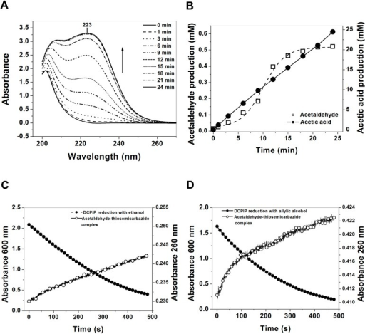 Determination of acetaldehyde-semicarbazone complex as the final product of the ADHa. (A) UV/vis spectra of the formation of acetaldehyde-semicarbazone complex at 223 nm. Spectra was recorded at three min intervals; (B) Determination of the acetaldehyde released during the reaction by the enzyme ADHa and trapped by the semicarbazide; (C) Time course of ethanol and (D) allylic alcohol oxidation by the ADHa from Ga. diazotrophicus.