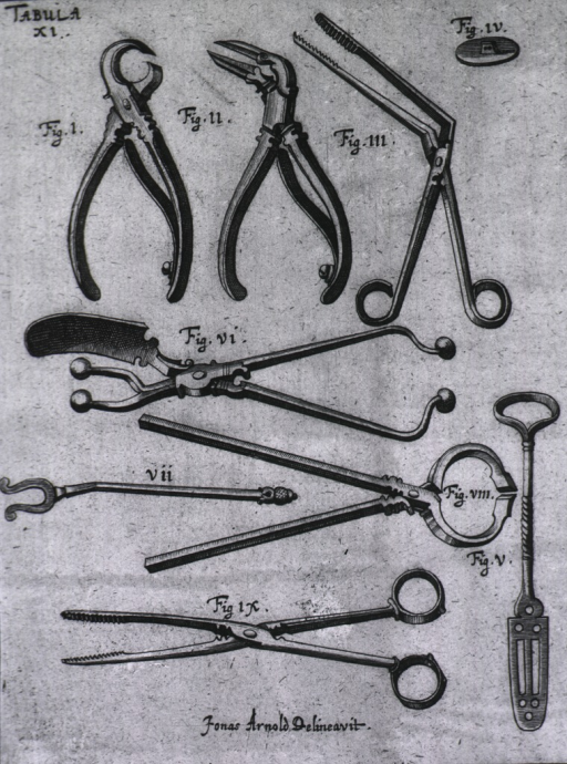 <p>Nine different types of forceps.</p>