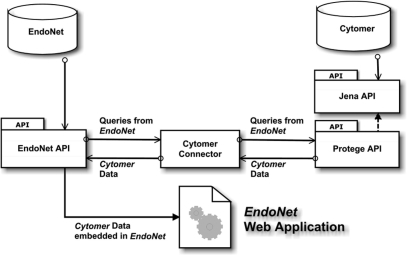 Schematic view of the information flow between the components of EndoNet and Cytomer.
