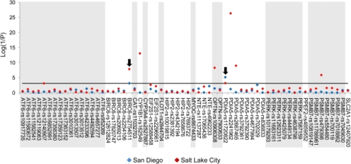 Association between POAG and candidate gene tagging rsSNPs.The graph shows the genotypic P-values (Log(1/P); y-axis) from likelihood ratio Chi-squared tests of associations with candidate gene SNPs (x-axis) from 2 populations (San Diego (blue) and Salt Lake City (red)). The black arrows indicate SNPs that were significant in both the San Diego and Salt Lake City cohorts. The black horizontal line indicates the Bonferroni adjusted P-value (P = 0.0008).