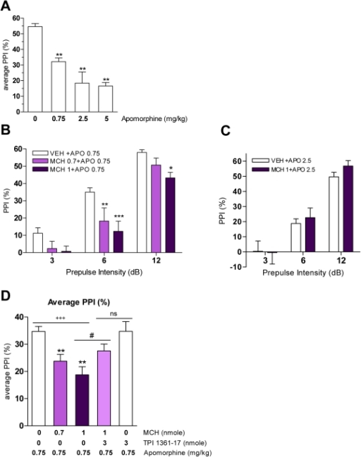 MCH effects on apomorphine-induced PPI deficits in mice.A. Effect of apomorphine (0, 0.75, 2.5, 5 mg/kg) on PPI (**p<0.01 vs. VEH, one-way ANOVA, with Dunnett's test; n = 5–21). Values represent average of % PPI elicited by three prepulse intensities ± SEM. B. PPI after MCH pretreatment (0, 0.7, 1 nmole) in apomorphine (0.75 mg/kg)-treated mice (*p<0.05, **p<0.01, ***p<0.001 vs. VEH+APO 0.75, two-way ANOVA with Bonferroni test; n = 8–19). C. PPI after MCH pretreatment (0, 1 nmole) in apomorphine (2.5 mg/kg)-treated mice (n = 8). Values (B–C) represent mean % PPI ± SEM. D. Average of PPI values after MCH and/or TPI 1361-17 pretreatment in apomorphine-treated mice (+++p<0.001, dose effect, one-way ANOVA; **p<0.01 vs. APO 0.75, one-way ANOVA with Dunnett's test; #p<0.05 vs. APO 0.75+MCH1, t-test; nsp>0.05 vs. APO 0.75+MCH1+TPI 3, t-test; n = 8–19). Values represent average of % PPI elicited by three prepulse intensities ± SEM.