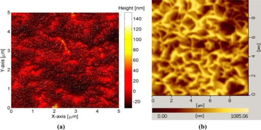 (a) AFM image of deposited gold thin film on glass substrate showing a flat surface with a surface roughness of Ra = 10 nm and (b) AFM image of grown ZnO-NFs arrays.