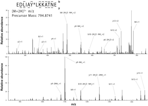 Nano-LC/ESI-MS/MS spectrum of EDLIApYLKKATNE.Peptides were eluted into the mass spectrometer by applying a HPLC gradient of 0–70% 0.1 M acetic acid/acetonitrile in 30 minutes. The mass spectrometer acquired top 9 data dependent ESI MS/MS spectra. The phosphorylation site was unequivocally assigned by fragment ions b6, b8, b9, b10, and y3, y4, y6. The sequence of the peptide was definitively assigned by b3, b6, b8, b9, b10, b11, b12, and y2, y3, y4, y6, y9, y10, y11.