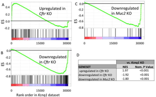 GSEAResults of GSEA showing enrichment scores (ES) of Cftr and Muc2 genesets with respect to the ranked Kcnq1 expression dataset. Shown are enrichment plots for genesets consisting of (A) genes upregulated in the small intestine of CFTR KO mice27; (B) genes downregulated in the small intestine of CFTR KO mice27;(C) genes downregulated in the small intestine of Muc2 KO mice37. (D) Normalized enrichment score (NES) and nominal P value (nom. P value) are shown for each comparison.