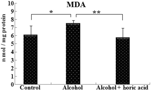 Effect of boric acid on malondialdehyde (MDA) levels in rats exposed to alcohol. *P<0.05; **P<0.01. Data shown are mean ± standard deviation.